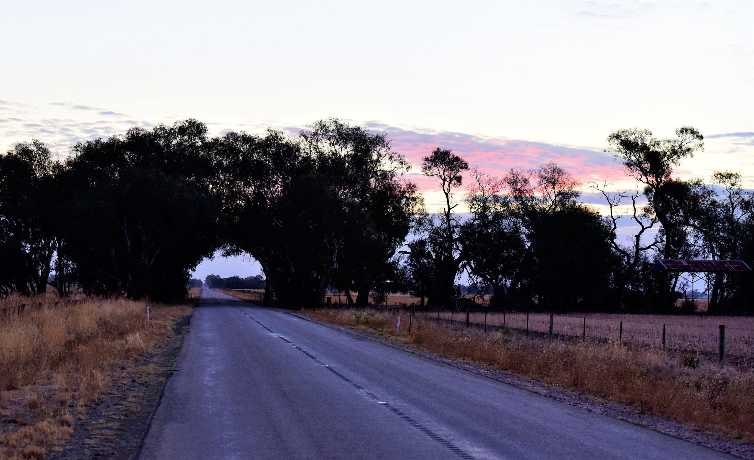 Road near mitiamo