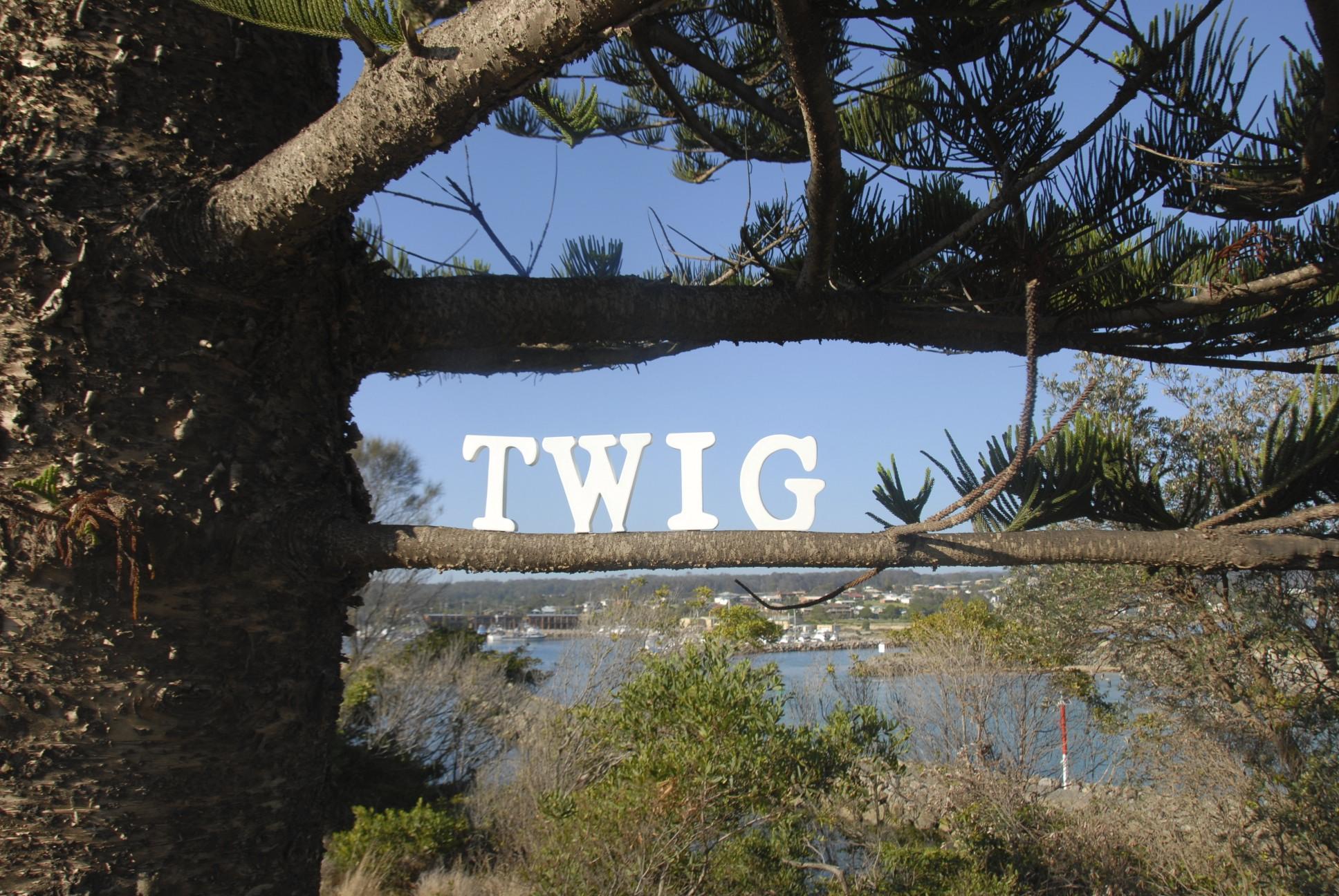Ten Years at Twig Marketing